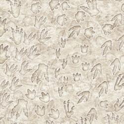 Jurassic Jungle - Dino Tracks Stone