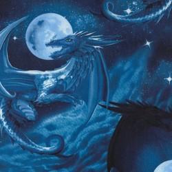 Midnight Dragons