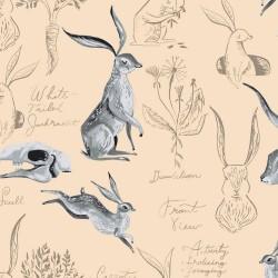 Natural History - Rabbits...