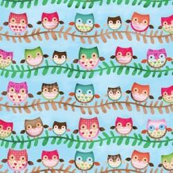 Friendly Forest -  Blue Owl Stripe